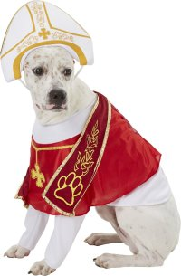 California Costumes Holy Hound Pope Dog Costume, Large