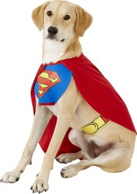 Rubie's Costume Company Classic Superman Dog & Cat Costume ...