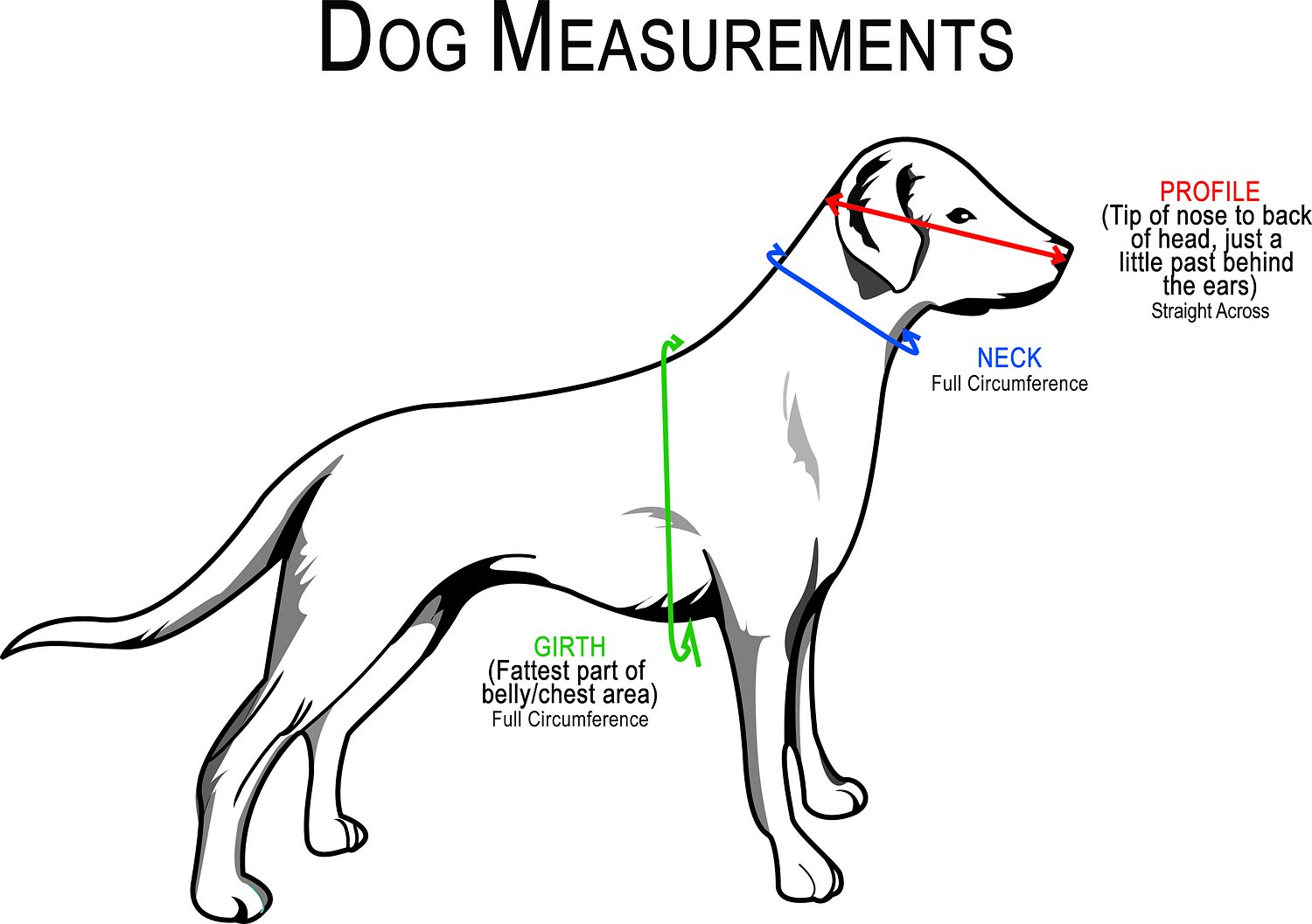 dog harnesses for large dogs