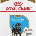 Royal Canin Rottweiler Puppy Dry Dog Food 30 Lb Bag Chewy Com