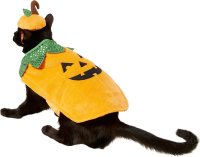 Frisco Pumpkin Dog & Cat Costume, X