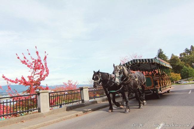 加拿大最大史丹利公園 x 溫哥華蒸氣鐘 x 街道與Italian Kitchen - Chiao