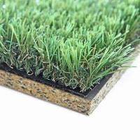 Indoor, Indoor Outdoor Grass Carpet, for Soccer of item ...
