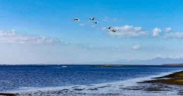 北海道最後秘境 野付半島 搭農作車探索天涯海角 別海町斑蝦撈捕船 巧遇蝦夷野鹿 丹頂鶴 北海道遺產