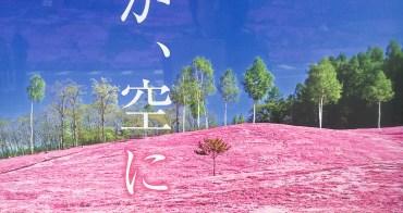 (日本北海道) Moss Phlox 道東滝上芝櫻公園,打翻粉紅色顏料罐的人是誰?芝櫻冰淇淋鹹甜香味真難忘