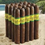 Bahia Brazil Robusto Cigars