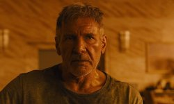 Harrison Ford Noticed Serving to A Lady Concerned In A Automotive Crash