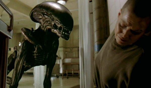 Alien 3 Xenomporph Sigourney Weaver