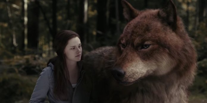 People Are Loving This Twilight Fan's Reaction To Finding Out How The Wolf  Scenes Were Filmed - CINEMABLEND