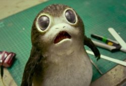 How Star Wars: The Final Jedi&#zero39;s Director Feels About The Porgs And Whether or not They&#zero39;re Too Cute