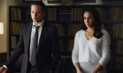 Fits Is Most likely Shedding Patrick J. Adams And Extra If Season eight Occurs