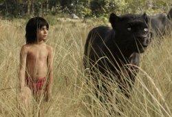 Jungle E-book 2 Will Use Some Authentic Jungle E-book Film Concepts