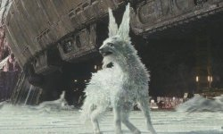 What Star Wars: The Final Jedi's Crystal Foxes Are Referred to as
