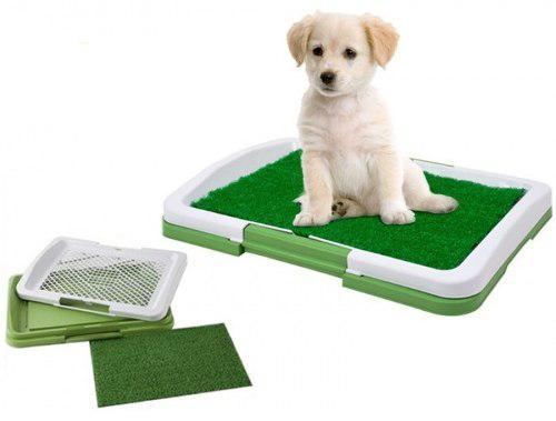 Bano portatil ecologico perros  Clasf