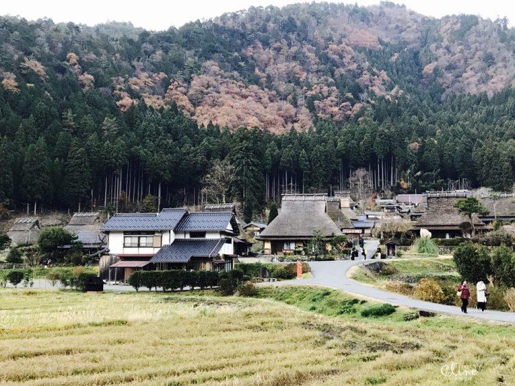 ▌京都賞楓自由行▌伊根州屋、美山、天橋立包車一日遊