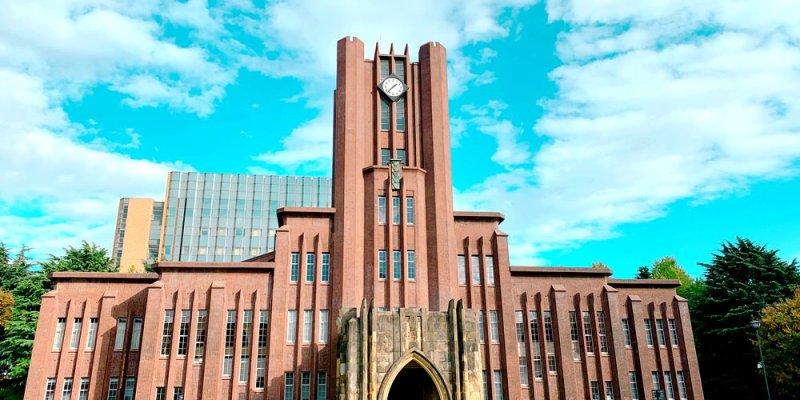 ▌東京大學銀杏▌ 超級無敵夢幻的銀杏併木群,彷彿走進金黃色的銀杏世界。安田講堂、赤門也是必訪的景點之一