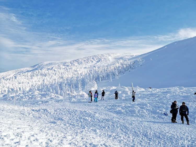 ▌藏王滑雪攻略▌快速地利用滑雪到達山頂。及雪道介紹、雪具租借、隱身在夢幻雪境的三五郎小屋
