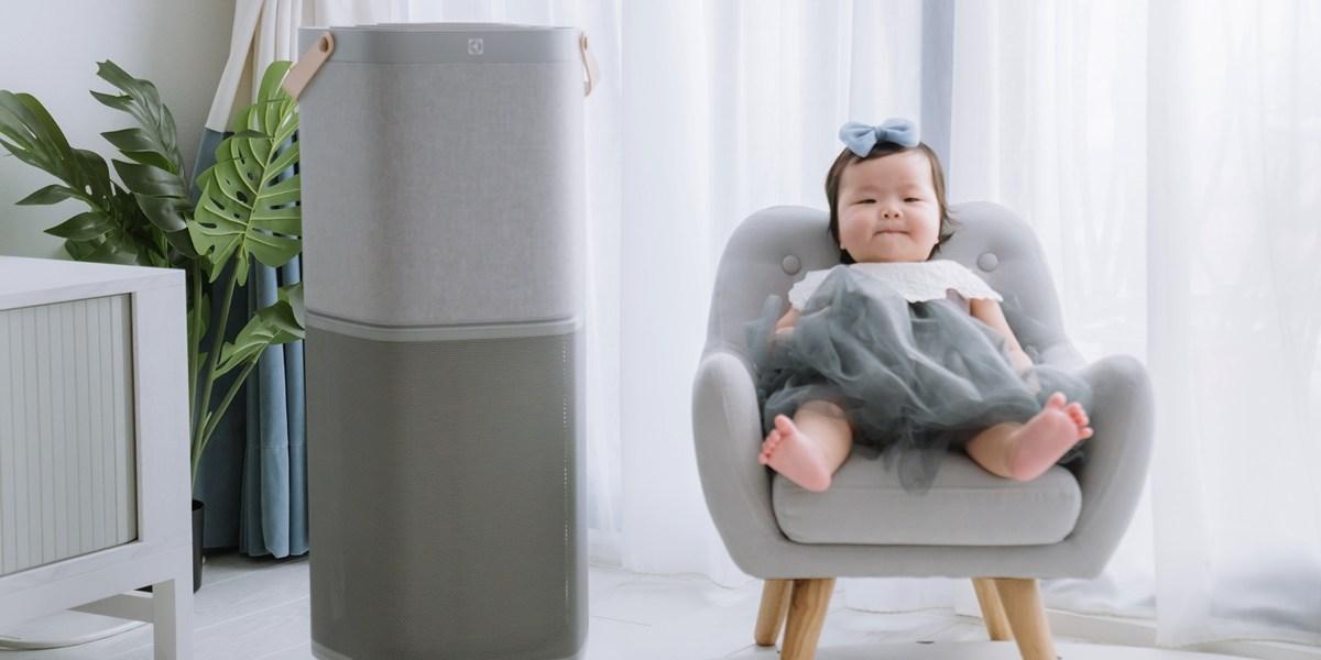 ▏破盤優惠買大送小▏美型又安靜,業界評比效能冠軍,瑞典伊萊克斯PURE A9 高效能抗菌空氣清淨機