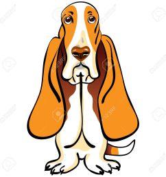 basset hound clipart 1 [ 1300 x 1300 Pixel ]