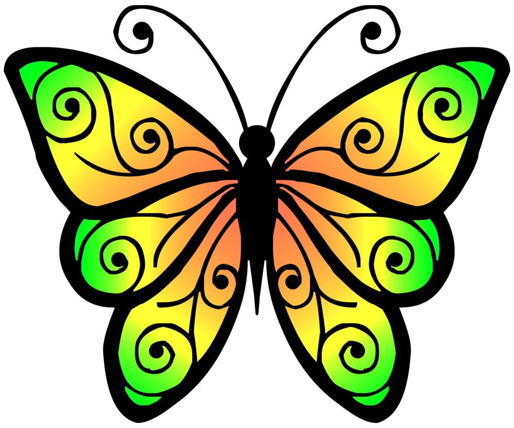 medium resolution of clipart butterfly 4 butterfly clipart