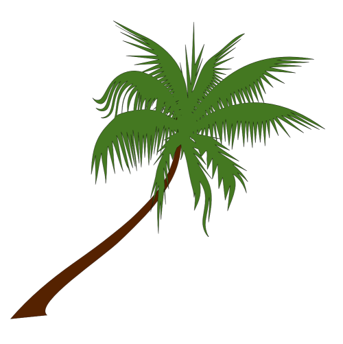 small resolution of christmas palm tree clip art