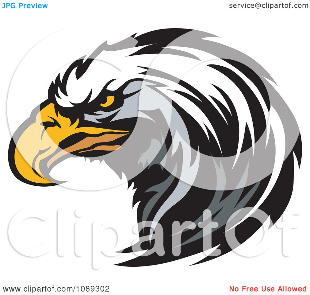 medium resolution of clipart bald eagle mascot hea eagle mascot clipart