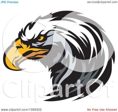 small resolution of clipart bald eagle mascot hea eagle mascot clipart