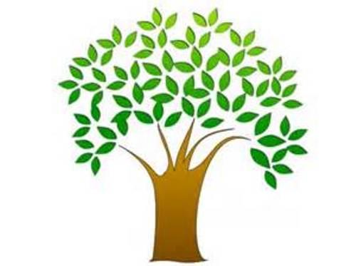 28 free clipart tree