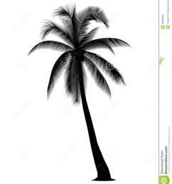coconut tree silhouette coconut tree clipart [ 1163 x 1300 Pixel ]