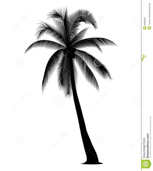 small resolution of coconut tree silhouette coconut tree clipart