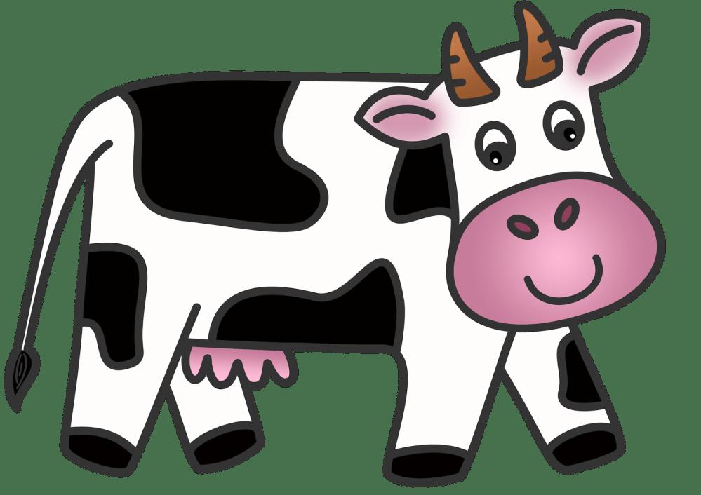 medium resolution of cow clip art animated cow