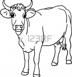 cow head clipart black and wh cow clipart black and white [ 1110 x 1203 Pixel ]