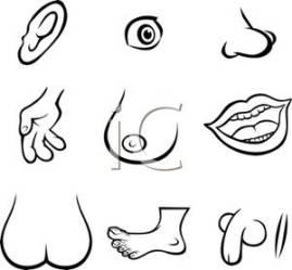 Boob Clip Art & Look At Clip Art Images ClipartLook