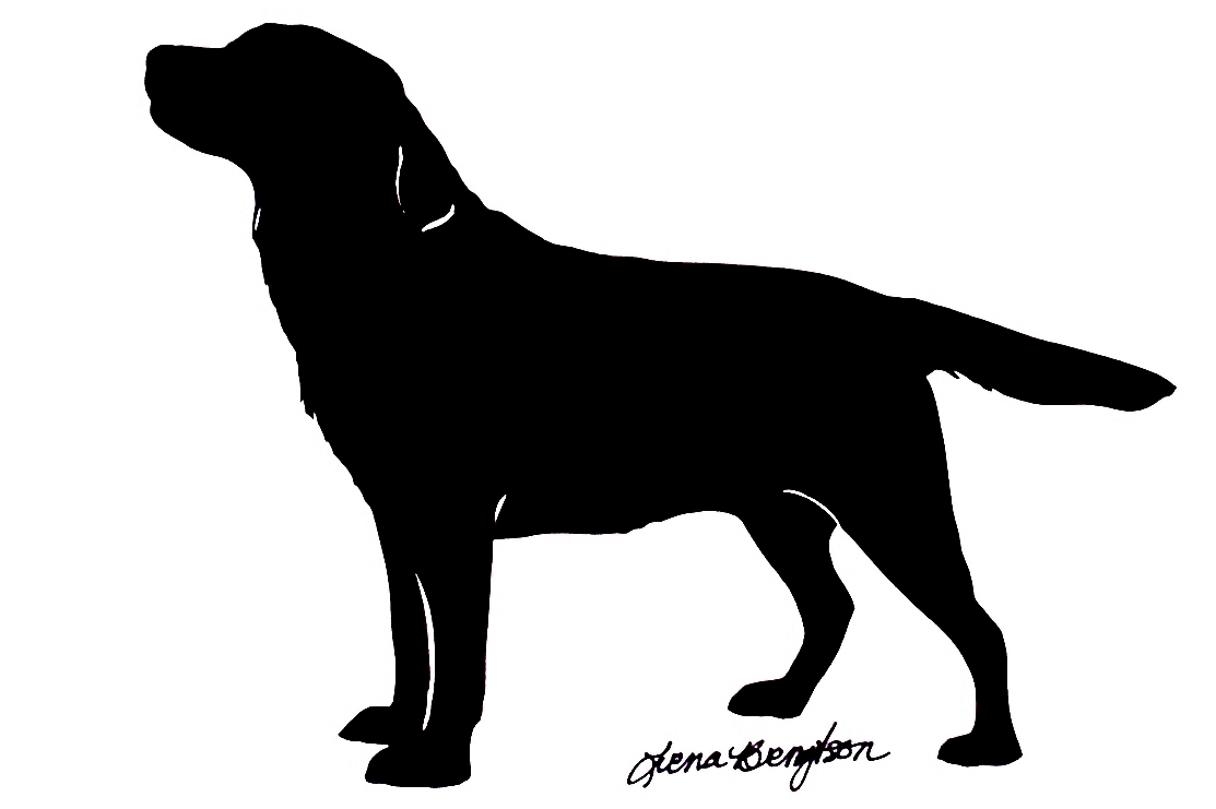 hight resolution of displaying images for maltese labrador retriever clip art