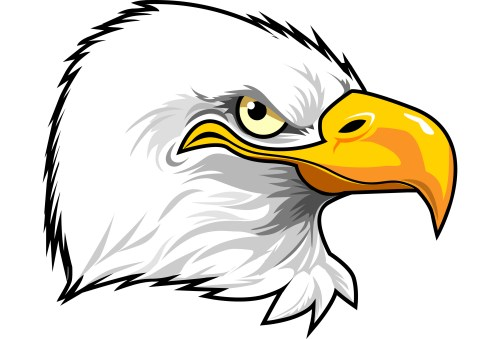small resolution of eagle eye clipart eagle head clipart