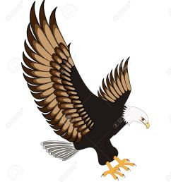 flying eagle clipart [ 1169 x 1300 Pixel ]