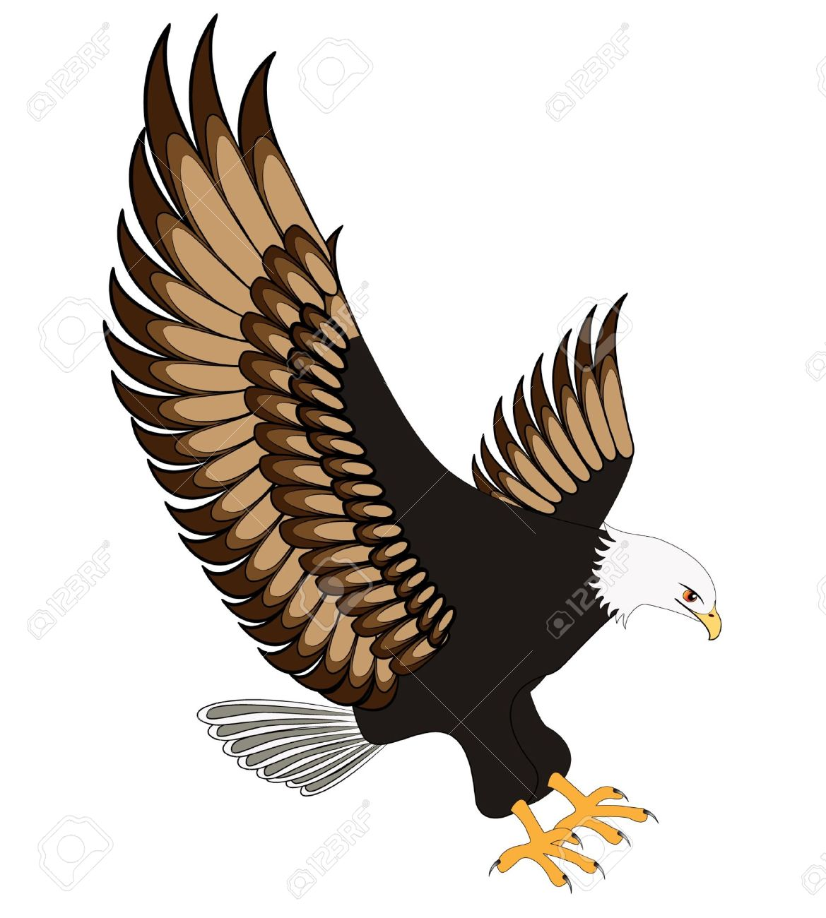 hight resolution of flying eagle clipart