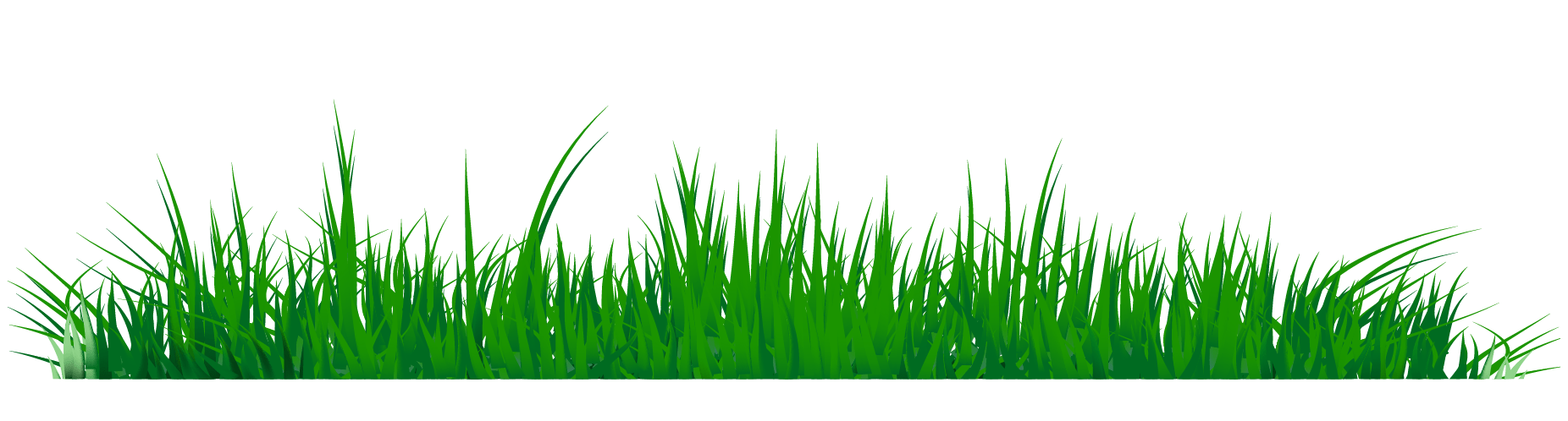 hight resolution of grass clipart png image 07 210x56 grass png images a live ornament tool