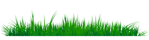 small resolution of grass clipart png image 07 210x56 grass png images a live ornament tool
