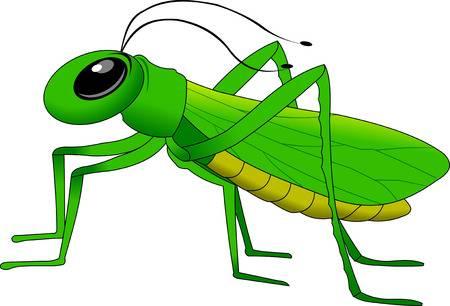 grasshopper clipart &
