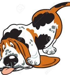 hound dog basset hound carto hound dog clipart [ 1300 x 912 Pixel ]