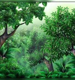 jungle clipart 1 [ 1024 x 768 Pixel ]