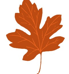 leaf clipart clipart cliparts for you 2 [ 1067 x 1350 Pixel ]