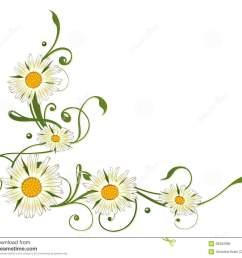 marguerite daisy daisy clip art free [ 1300 x 1123 Pixel ]