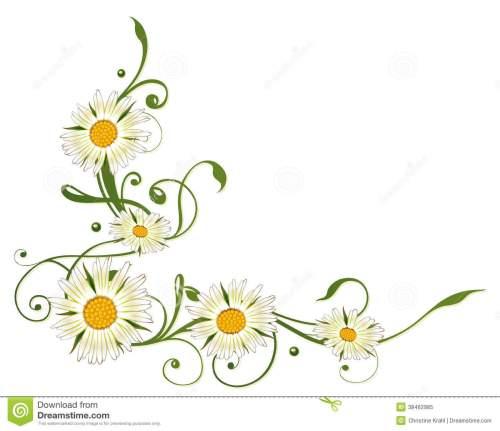 small resolution of marguerite daisy daisy clip art free