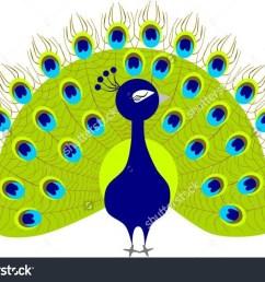 peacock clipart peacock clipart [ 1500 x 1148 Pixel ]
