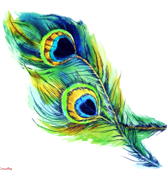 peacock feather peacock clipart free [ 1353 x 1281 Pixel ]