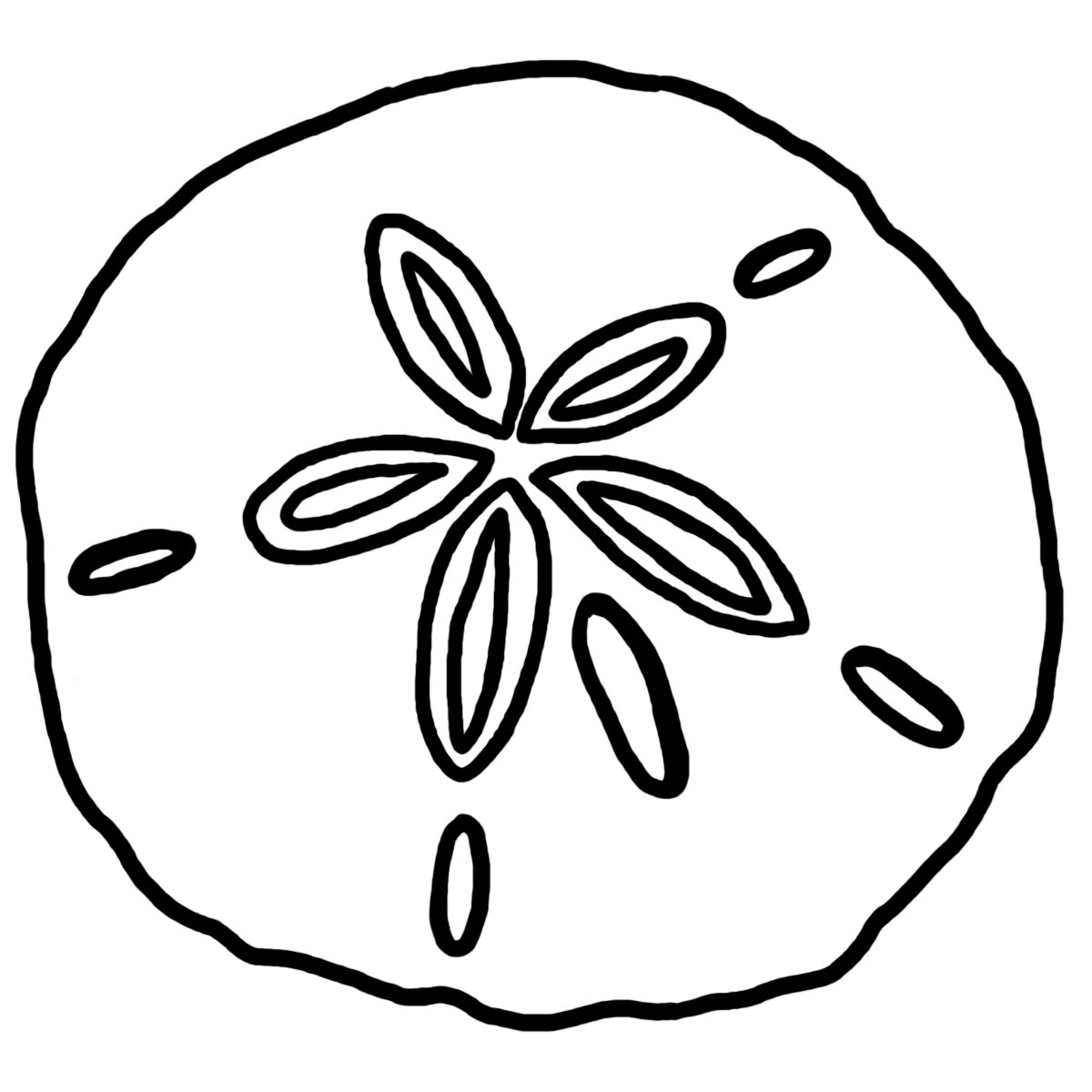 hight resolution of sand dollar clipart