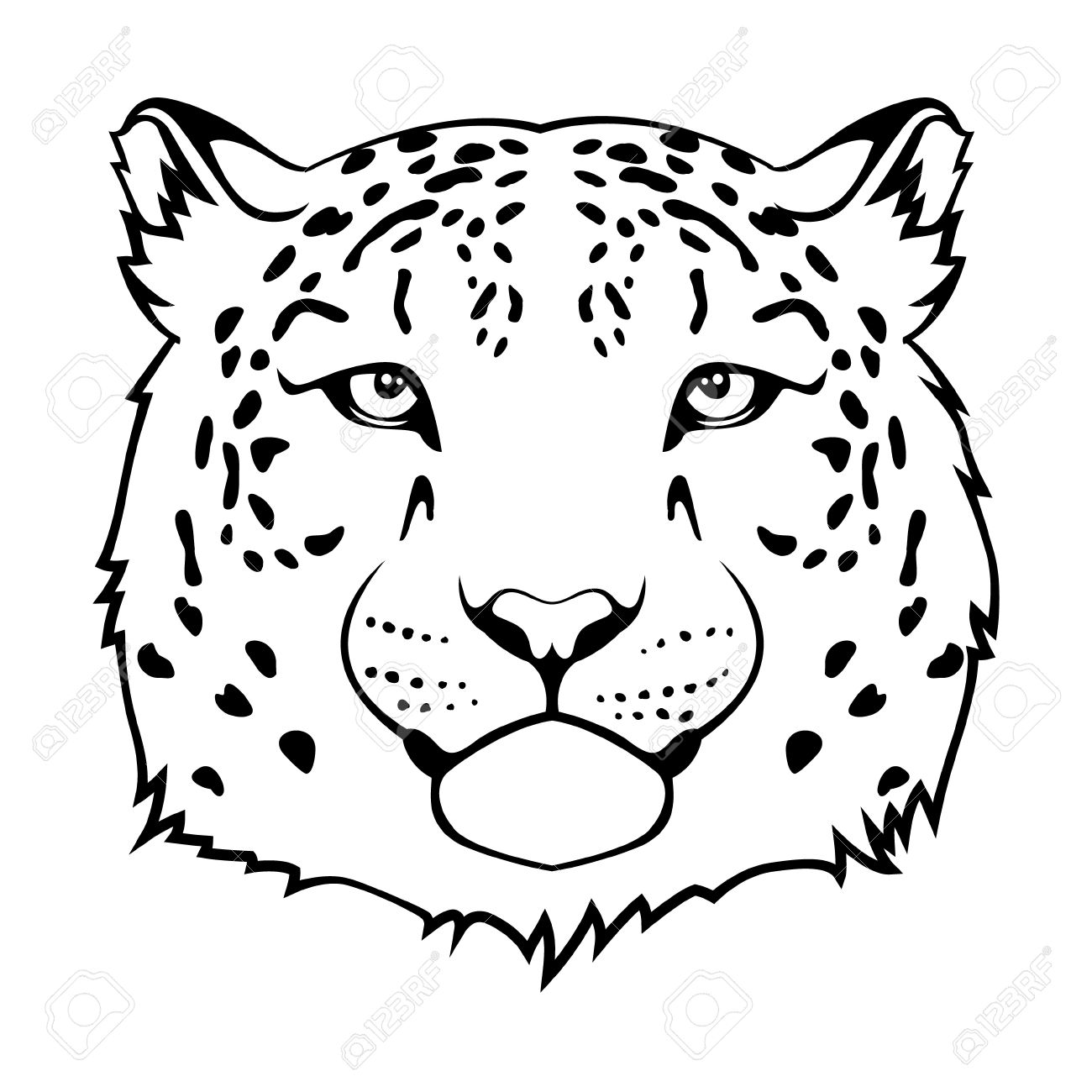 Snow Leopard Clipart Amp Look At Clip Art Images