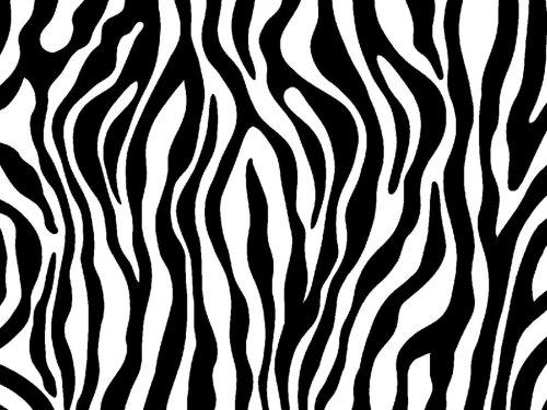 small resolution of zebra print clipart